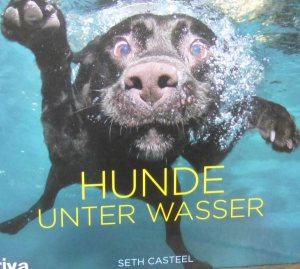 HundeunterWasser_1